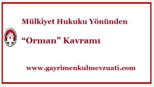 Orman-Kavrami